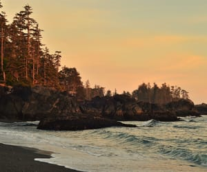 vancouver island and explore bc image