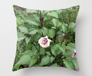 bedroom, nature, and throw pillow image