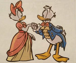 darcy, donald, and duck image