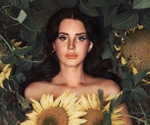 lana, sunflower, and lana del rey image