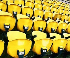 numbers, rows, and seats image