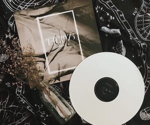 vinyl and the 1975 image