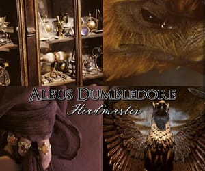 aesthetic, harry potter, and albus dumbledore image
