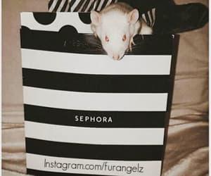 animals, sephora, and shopping image