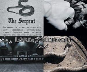 aesthetic, harry potter, and tom riddle image