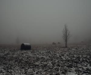 aesthetic, fog, and dark image