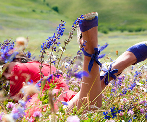 flowers, shoes, and blue image