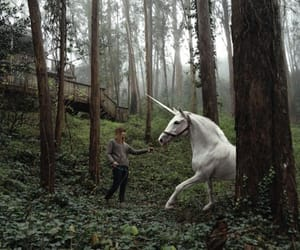 fantasy, nature, and unicorn image