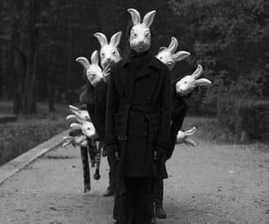 rabbit, bunny, and creepy image
