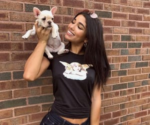 dog, model, and puppy image