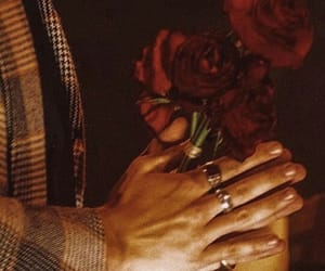 flower, hands, and rings image