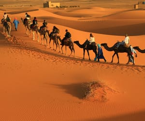 morocco private tours, morocco luxury tours, and private morocco tours image