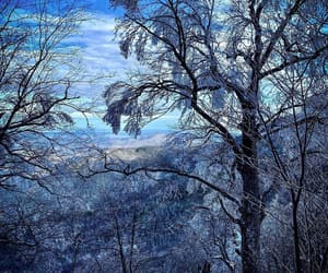 blue, winter, and landscape image