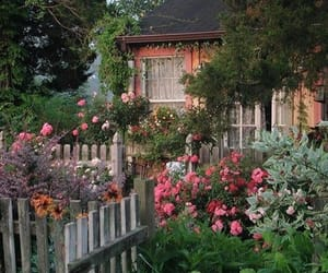 flowers, house, and garden image