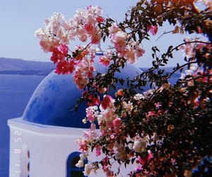 aesthetic, Greece, and santorini image