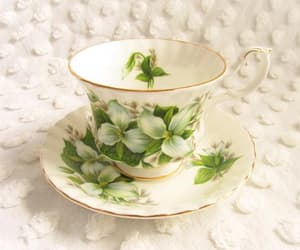 ontario, white flower, and tea cup image