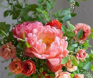 colores, flores, and flowers image