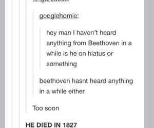 cool, tumblr, and funny image
