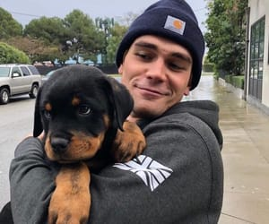 riverdale, dog, and kj apa image