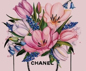 art., chanel, and creative image