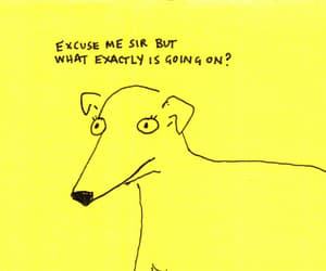 quotes, dog, and yellow image