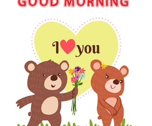 cute morning images, teddy bear morning dp, and gud mrng dp for status image