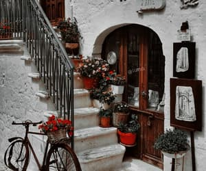 travel, architecture, and flowers image