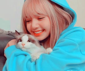 lisa, blackpink lq, and blackpink image
