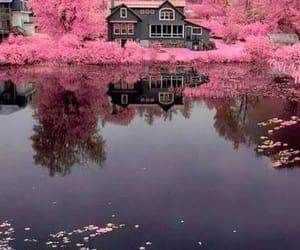 lake, pink, and landscape image