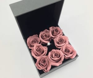 gift, roses, and happyday image