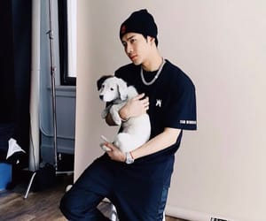 dog, kpop, and got7 image