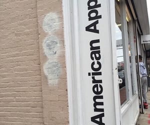 aesthetic, white, and american apparel image