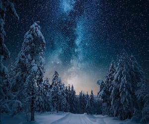 forest, milky way, and norway image