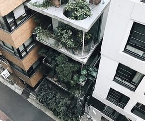 city, cool, and green image