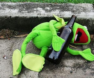 drunk, frog, and kermit image
