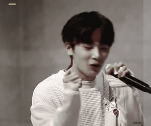 gif, stay, and jeongin image