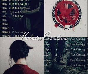 aesthetic, the hunger games, and mockingjay image