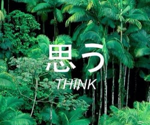 aesthetic, green, and quote image