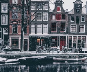 amsterdam, architecture, and nature image