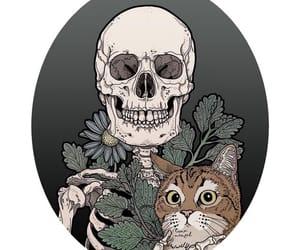 background, skeleton, and wallpaper image