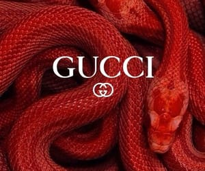 gucci, snake, and red image