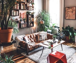 home, decor, and plants image