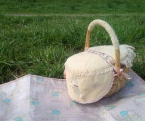 pale, picnic, and soft image