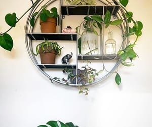 cool, craft, and decor image