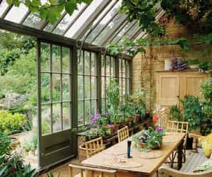 garden, plants, and conservatory image
