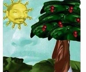 funny, snoop dog, and tree image