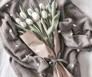 aesthetic, bouquet, and cozy image