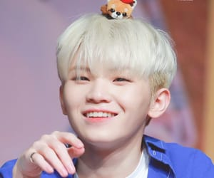 woozi and Seventeen image