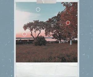 aesthetic, polaroid, and blue image