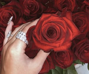 accessories, rose, and bling image